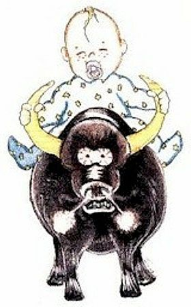 zodiaco bimbi toro